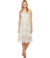Adrianna Papell Liliana 3D Metallic Lace Midi Fit And Flare Bateau Neck Dress Ivory Gold Women's Dress