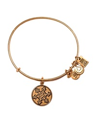 Alex And Ani Team Usa Olympic Snowflake Bangle Rafaelian Gold