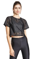 Koral Activewear Terrain Plutone Crop Top Black