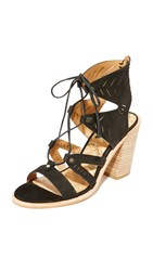 Dolce Vita Luci Sandals Black