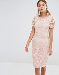 Oasis Premium Floral Lace Pencil Dress Nude Beige