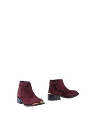 Purified Ankle Boots Maroon