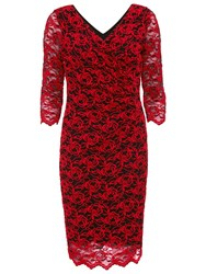 Gina Bacconi 3D Embroidered Net Dress Black Red
