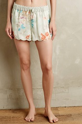 Eloise Linnette Scallop Shorts Mint