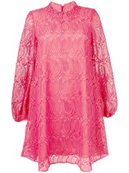 Giamba Flared Lace Dress Pink