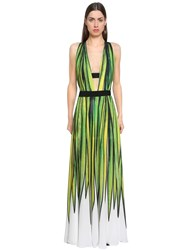 Elie Saab Printed Double Georgette Dress Multicolor