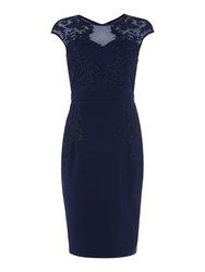 Little Mistress Cap Sleeve Lace Bodycon Dress Navy
