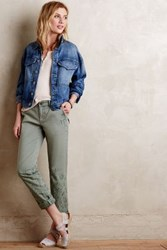 Pilcro Hyphen Embroidered Chinos Holly