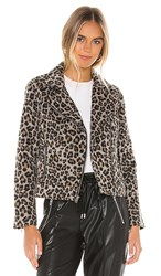 Cupcakes And Cashmere Margaux Leopard Moto Jacket In Gray. Heather Grey