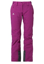 Salomon Iceglory Waterproof Trousers Aster Purple