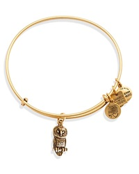 Alex And Ani Ode To The Owl Expandable Wire Bangle Charity By Design Collection Rafaelian Gold