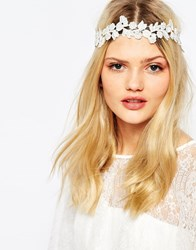 Love Rocks Floral Lace Chiffon Headband Cream