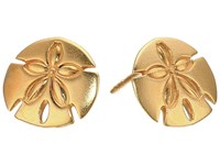 Alex And Ani Post Earrings Sand Dollar Gold Earring
