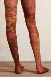 Anthropologie Rosewood Tights Brown Motif
