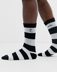 Santa Cruz Screaming Mono Hand Sock In Black