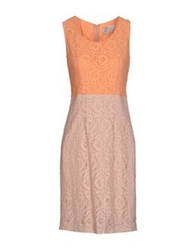 Nine Short Dresses Apricot