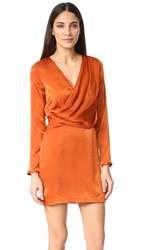 Style Stalker Erick Dress Copper