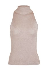 Topshop Sleeveless Metal Yarn High Neck Knitted Top Mink