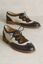 Anthropologie Miss Albright Curricula Cutout Oxfords Black 9.5 Oxfords
