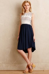 Dolan Skyward Petite Knit Dress