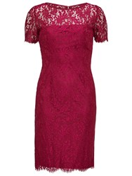 Gina Bacconi Scallop Eyelash Lace Dress Bright Wine