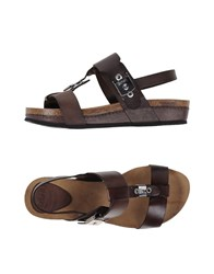 Scholl Footwear Sandals Women Dark Brown