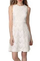 Donna Morgan Women's Chevron Lace Fit And Flare Dress