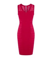 Pinko Maggio Lace Dress Red
