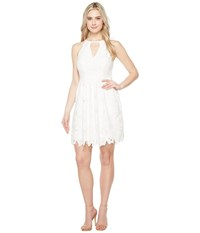 Adrianna Papell Celcilia Lace Fit And Flare Dress With Halter Neckline White Women's Dress