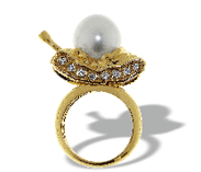 Completedworks South Sea Pearl Tank Ring Gold