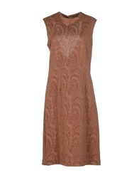 Semi Couture Knee Length Dresses Brown