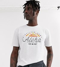 Quiksilver White Graphic T Shirt