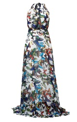 Maiocci Collection Butterfly Print Backless Silk Maxi Dress Multi Coloured