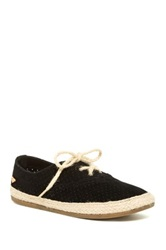 Roxy Dixie Lace Up Sneaker Black