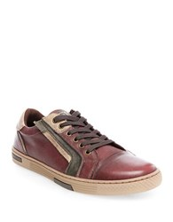 Steve Madden Adison Leather Fashion Sneakers Burgundy