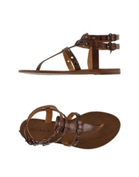 Coral Blue Thong Sandals Cocoa