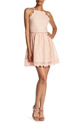 Just Me Scalloped Lace Skater Dress Pink