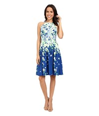 Adrianna Papell Garden Party Placed Floral Print Dress Blue Multi Women's Dress