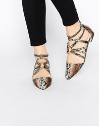 Asos Lori Caged Pointed Ballet Flats Snake Multi