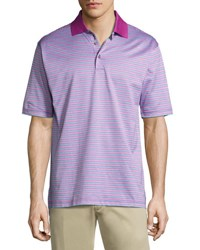 Bobby Jones Stripe Print Short Sleeve Polo Shirt Plum