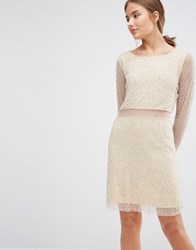 Walter Baker Shay Long Sleeve Beaded Dress With Sheer Panel Nude Silver Pink