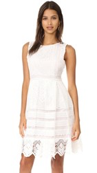 Cupcakes And Cashmere Summers Lace Fit Flare Dress Ivory