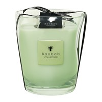 Baobab Vidra Scented Candle Limited Edition Poetry Green