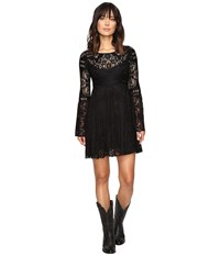 Stetson Black Lace Knee Length Dress Black Women's Dress