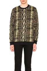 Givenchy Python And Stripe Sweatshirt In Black Yellow Animal Print Black Yellow Animal Print