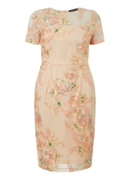Dorothy Perkins Apricot Floral Embroidered Pencil Dress Orange
