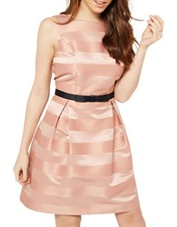 Miss Selfridge Stripe Prom Fit And Flare Dress Pink