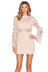 Endless Rose Willamette Lace Dress Blush