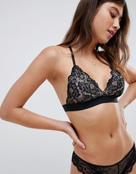 South Beach Lace Halter Back Bralet Black