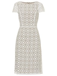 Betty Barclay Graphic Print Dress Cream Taupe